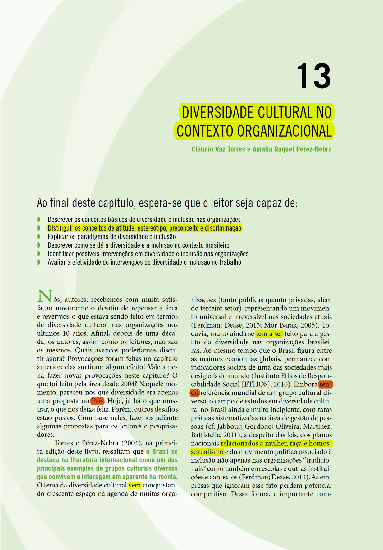 Diversidade-e-Inclusão-nas-Organizações capa diversidade e inclusão nas organizações Diversidade e Inclusão nas Organizações Diversidade e Inclusao nas Organizacoes capa